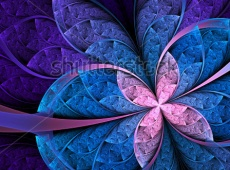 stock-photo-colorful-flower-or-butterfly-digital-fractal-art-design-121145755 copy